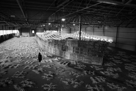 Takahiro Suzuki: Ikiro, 2008, installation shot, Southern Fruit Warehouse; image held here